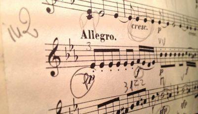 violin-1085606_1920